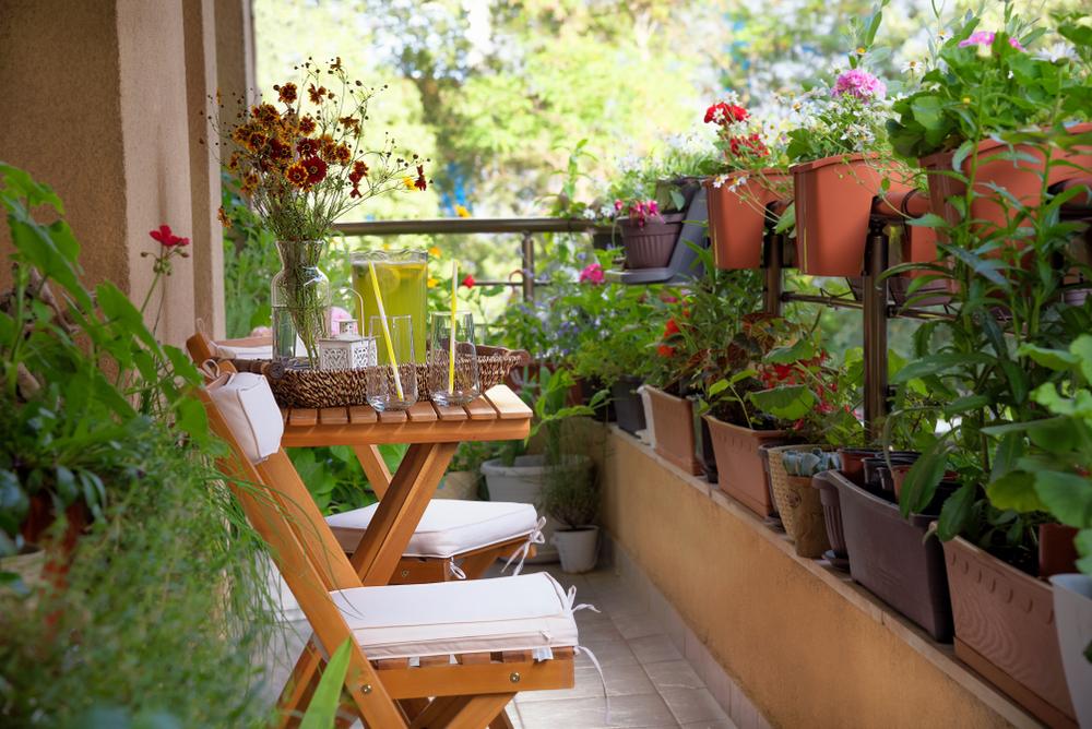 Décoration d'un petit balcon avec des plantes